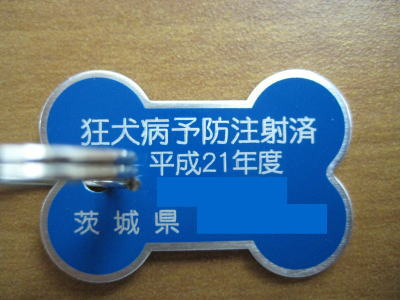 狂犬病予防注射済