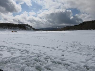 羽鳥湖の湖面はグチャグチャ