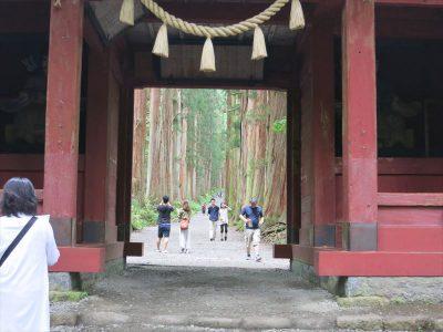 神門の先に見える杉並木