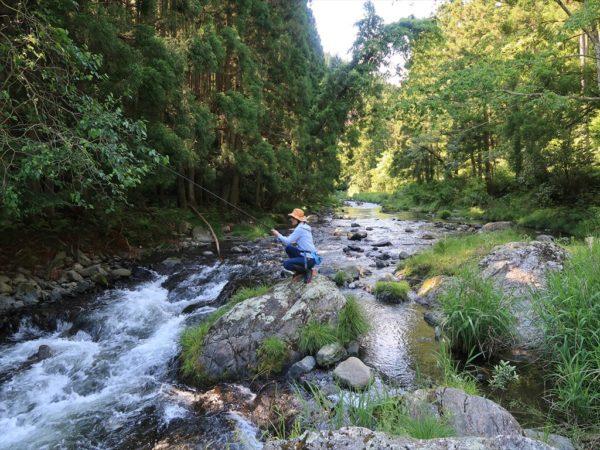 入遠野川で渓流釣り