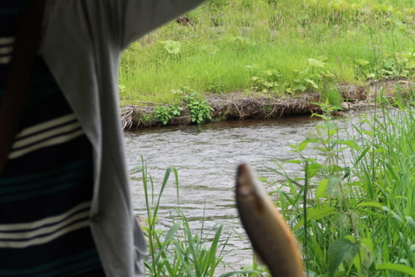 ベベルイ川