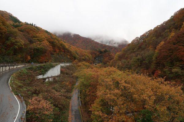 湯西川の紅葉