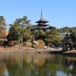 猿沢池からみる興福寺