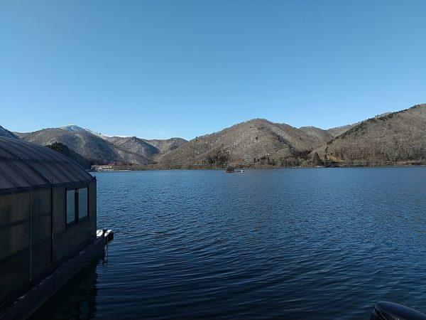 凍りそうもない桧原湖